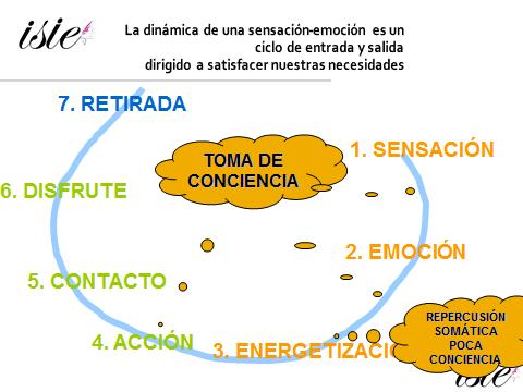 ciclo emocion