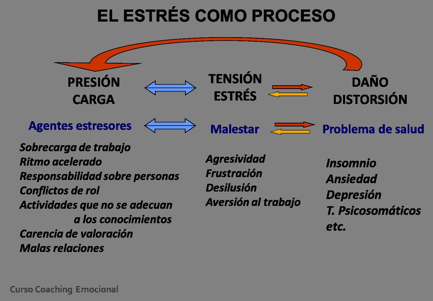 primer ciclo de esteroides tupincho