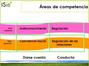 areas competencia