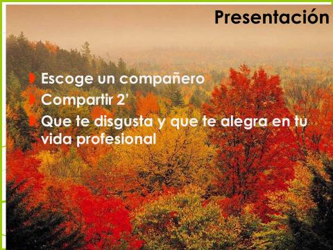 presentacion curso enfado 2013