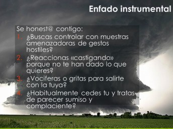enfado instrumental2