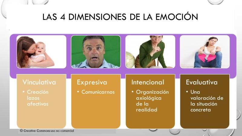 las 4 dimensiones de la emocion